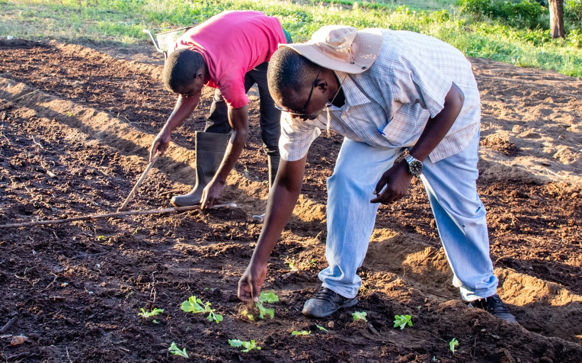 Bishop Yambasu agriculture initiative announced by Global Ministries