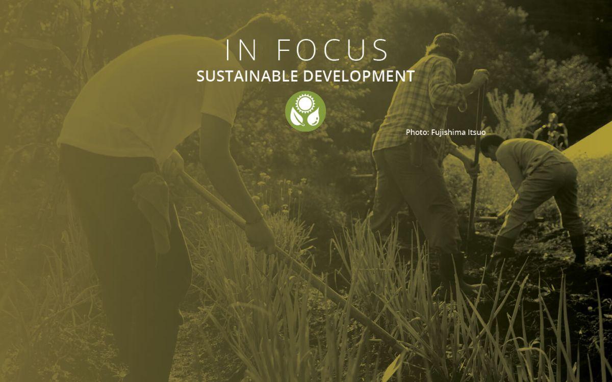 In Focus: Sustainable Development